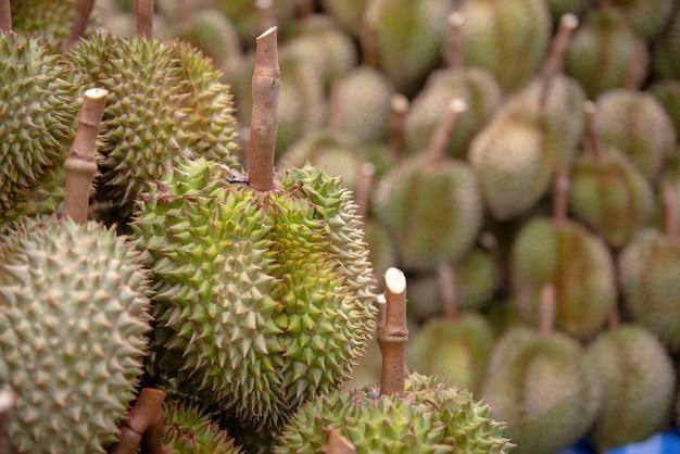 Divisão durian, após os agricultores recolherem os produtos desde o início em chanthaburi, na tailândia