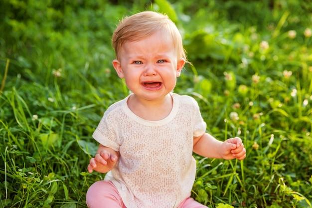 Doce, chorando, gritar, menina bebê, sentar grama, parque, jardim, prado
