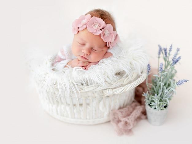 Doce recém-nascido na cesta