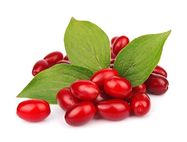 Dogberry doce (cornel berries) com folhas fechadas no branco