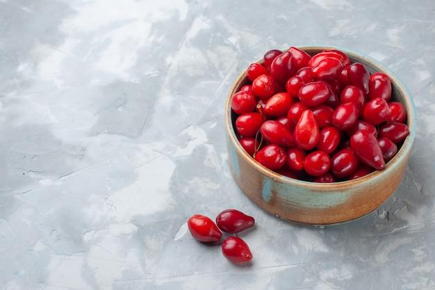 Dogwoods vermelhos frescos com frutas ácidas e deliciosas dentro do pote na mesa de trabalho