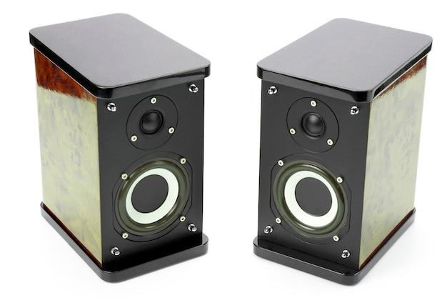 Dois alto-falantes de áudio estéreo em fundo branco. assuntos de sistema eletrônico
