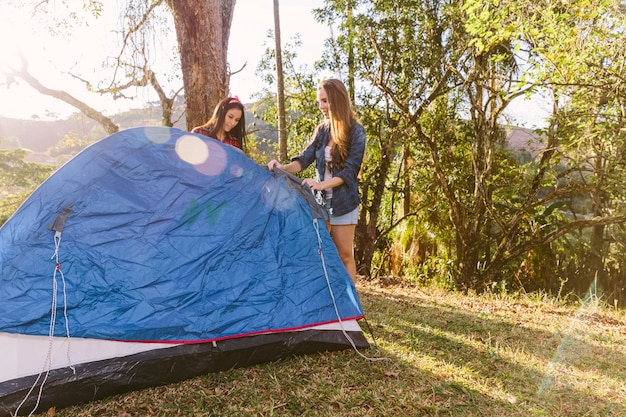 Dois, amigo feminino, preparar, barraca, durante, acampamento, viagem