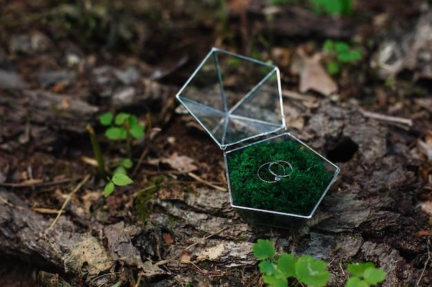 Dois anéis de casamento em uma linda caixa de vidro