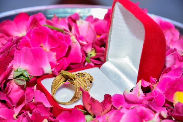Dois anéis de noivado com diamantes ao lado do outro com pétalas de rosa