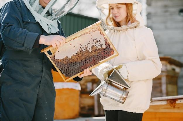 Dois apicultores trabalhando no apiário. trabalhando com equipamento de macacão.