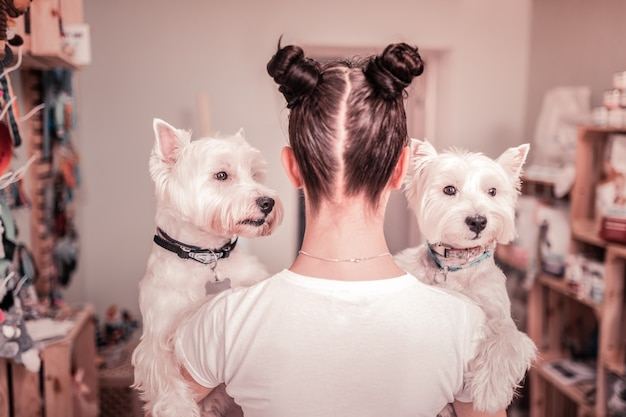 Dois cães brancos. mulher jovem de cabelos escuros com dois coques de cabelo segurando dois cachorros brancos