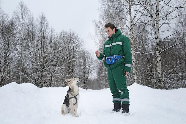 Dois cães caminham ao ar livre no inverno com um dono