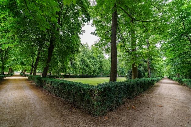 Dois caminhos alternativos em parques públicos com trilhas de terra em ambos os lados