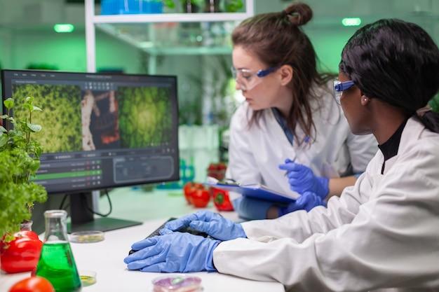Dois colegas verificando amostra de carne vegana