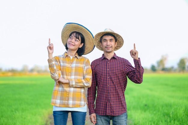 Dois fazendeiros asiáticos, uma mulher em pé e levantando o dedo com a mão apontando para o topo na fazenda de arroz