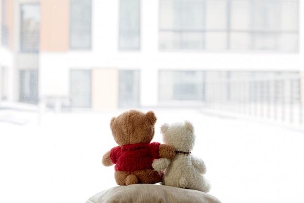 Dois filhotes de urso abraçam e olham para fora da janela