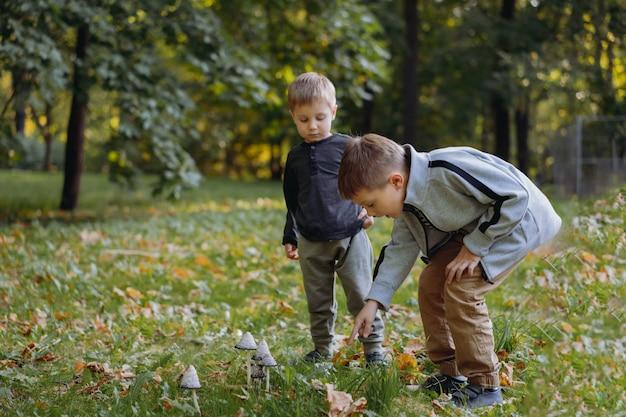 Dois irmãos caucasianos fofos encontraram um cogumelo envenenado em um parque público, irmão mais velho mostrando-o