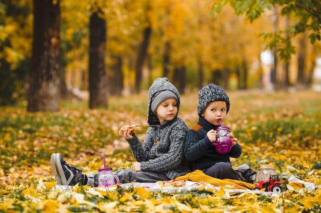 Dois irmãos meninos sentados em xadrez no parque e bebem, comem pizza caseira de maçãs vermelhas
