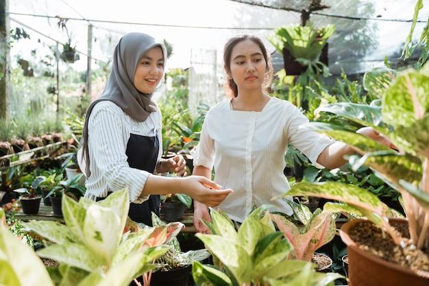 Dois jardineiro feminino trabalhando