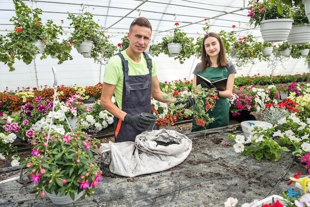 Dois jardineiros felizes em aventais trabalham com plantas de flores no jardim da estufa da natureza. temporada de primavera