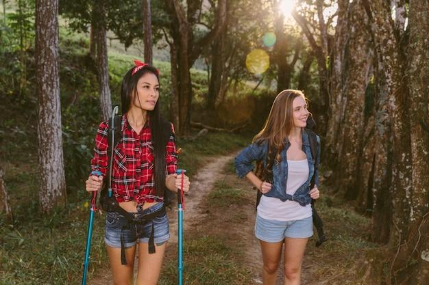 Dois, jovem, femininas, amigos, hiking, em, floresta