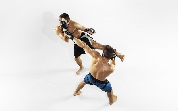Dois lutadores de mma profissionais de boxe isolado no estúdio branco.