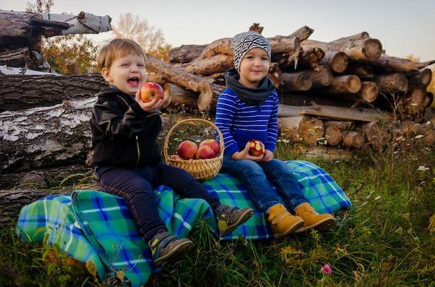 Dois meninos adoráveis de dois anos sentado no tapete no log e comendo maçãs suculentas vermelhas brilhantes de uma cesta de vime