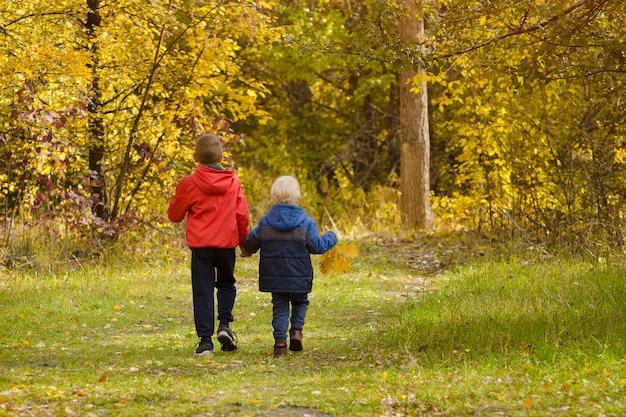 Dois meninos andando no parque outono.