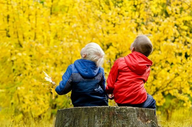 Dois meninos sentados no tronco de uma árvore na floresta de outono