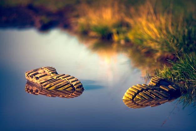 Dois pares de sapatos na água