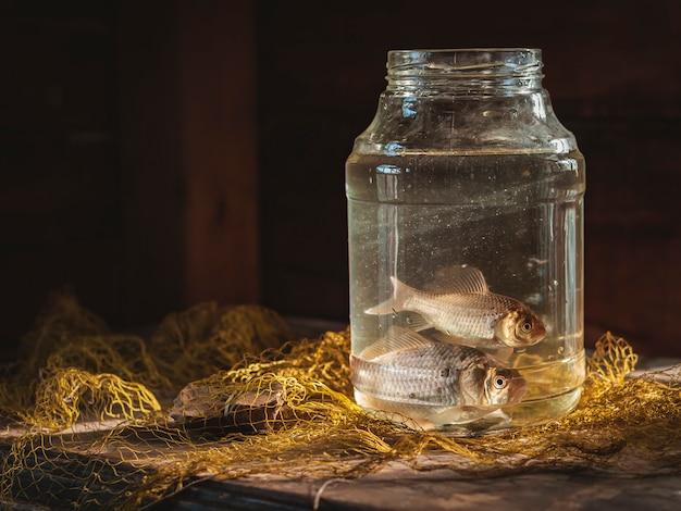 Dois peixes de carpa em uma jarra de vidro em cima da mesa com uma rede de pesca. ainda vida de pesca.