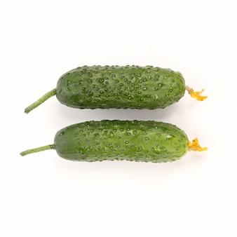 Dois pepinos verdes em fundo branco