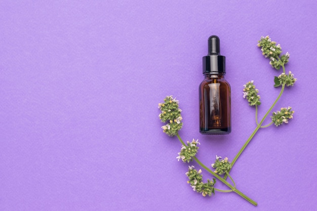 Dois raminhos de ervas medicinais e um frasco de remédio em um fundo roxo. o conceito de tratamento e cuidado corporal com remédios naturais. postura plana.