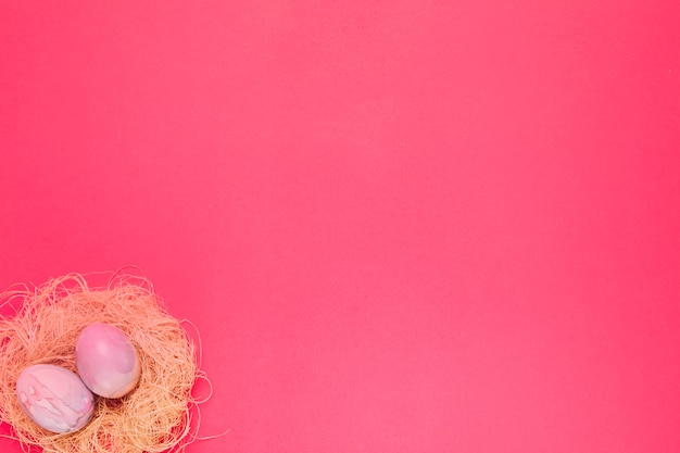Dois rosa pintado ovos de páscoa no ninho no canto do pano de fundo-de-rosa