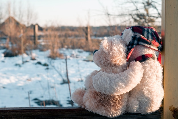 Dois ursinhos de pelúcia, um branco de chapéu vermelho, o segundo marrom de camomila, sentado abraçado. o conceito de família, relacionamentos, amor.