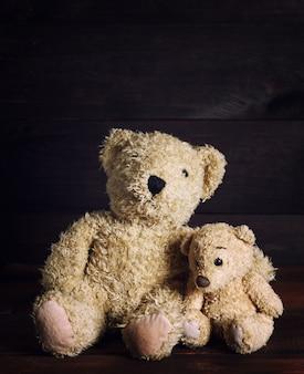 Dois ursos de pelúcia macios estão sentados