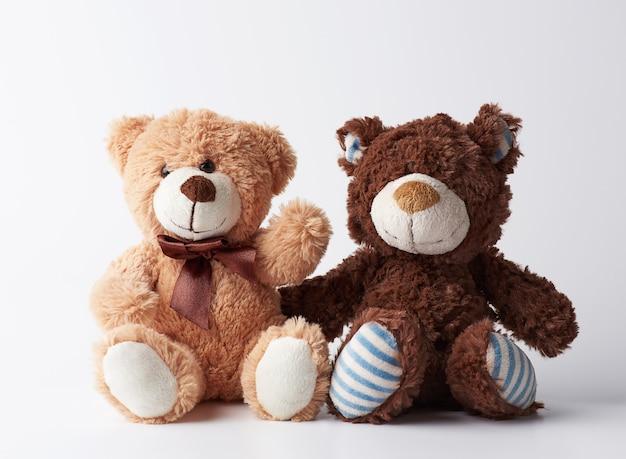 Dois ursos de pelúcia marrons sentado