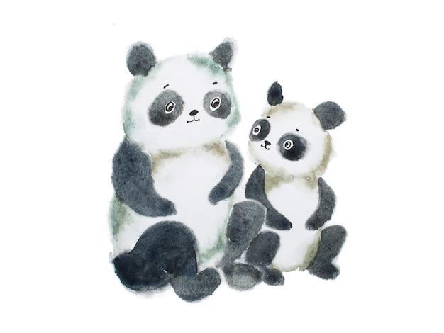 Dois ursos panda peludos fofos pintados à mão com aquarela