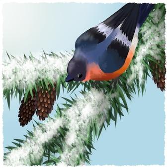 Dom-fafe pássaro em galho de abeto coberto de neve