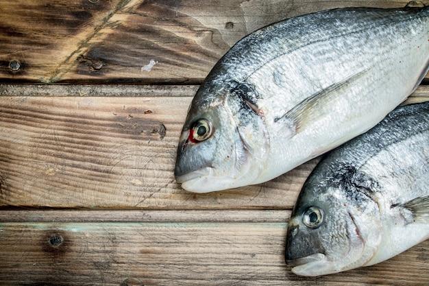 Dorado de peixes marinhos crus. em uma madeira.