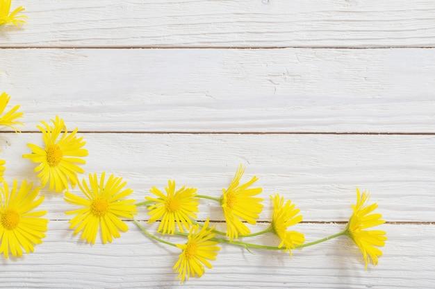 Doronicum flores sobre fundo de madeira pintado