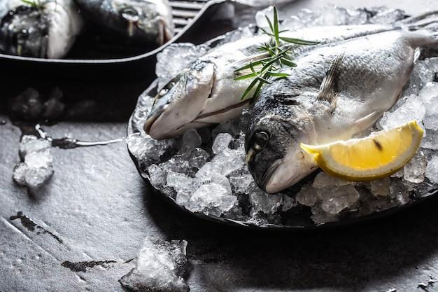Dourada de peixe mediterrâneo cru no gelo com alecrim e limão.