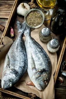 Dourado de peixe do mar cru com especiarias e vinho branco. em uma madeira.