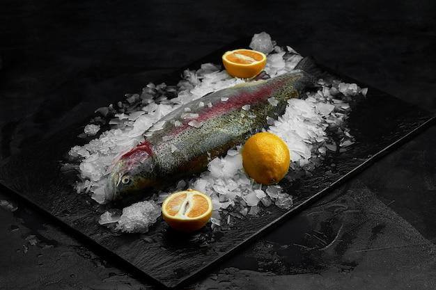 Dourado orgânico fresco cru ou pargo com limão em cubos de gelo sobre ardósia preta, pedra ou fundo de concreto.