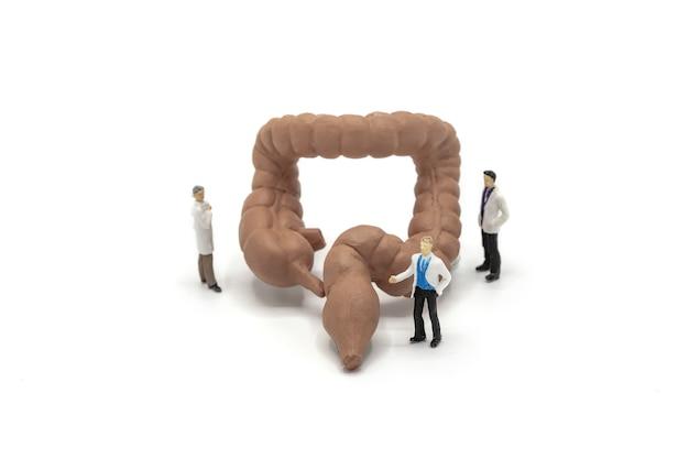 Doutor e enfermeira diminutos observando e discutindo sobre o grande intestino humano.