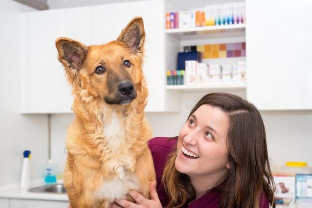 Doutor, em, a, clínica veterinária, abraçando, um, bonito, cão
