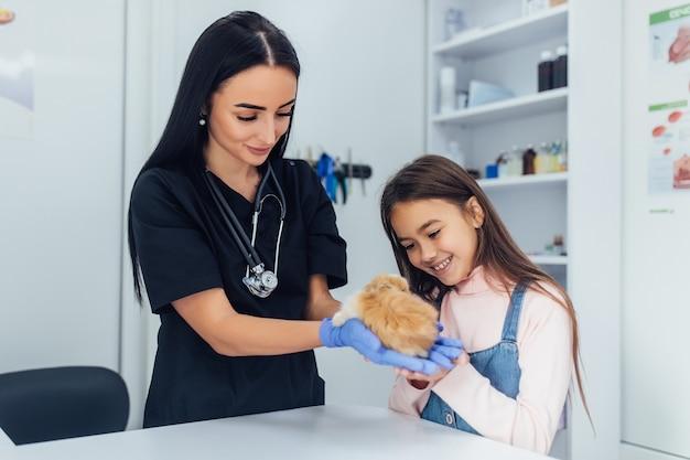 Doutor em uniforme preto, filha pequena com seu animal de estimação chinchila no veterinário.