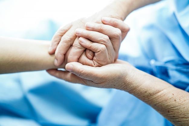 Doutor, segurando, toque, mãos asiático, senone, ou, idoso, senhora, mulher, paciente, com, amor