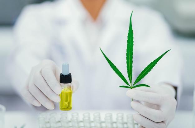 Doutor, segurando uma conta de folha e óleo de cannabis