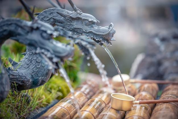 Dragão de forma de água primaveral na vila de oshino hakkai