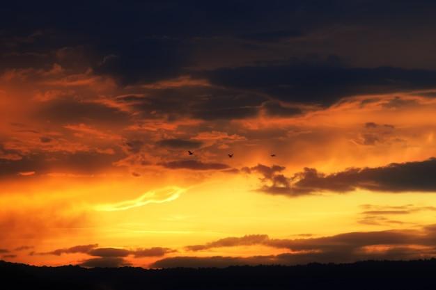 Dramático céu nublado com nuvens de laranja e pássaro.