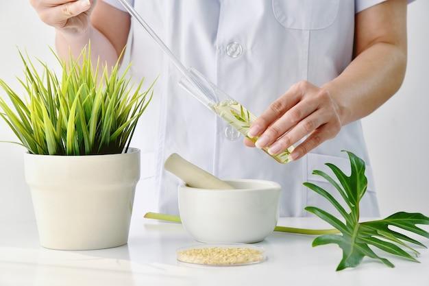 Droga de extração natural de plantas, médico ou cientista pesquisando para fitoterapia