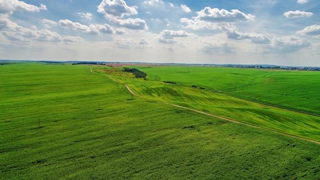 Drone com uma câmera em um campo verde.