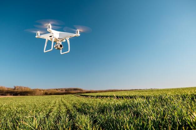 Drone quad helicóptero no campo de milho verde